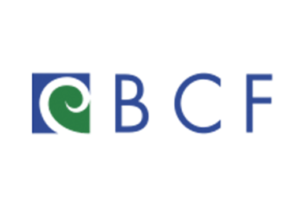 Logo for Baltimore Community Foundation