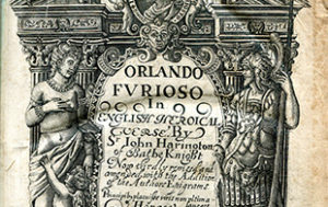 Ariosto's epic 16th century Italian poem, Orlando furioso.